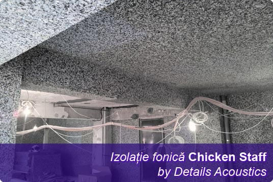 izolatie_fonica_chicken_staff-min